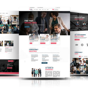 Divi Business Theme